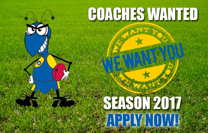 Coaches Wanted for Season 2017